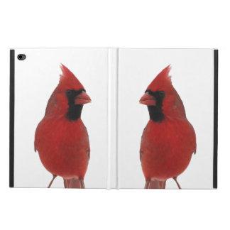 Cardinals Powis iPad Air 2 Case