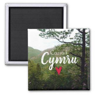 Cariad Cymru Wales Hill Landscape Devils Bridge Magnet