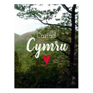 Cariad Cymru Wales Hill Landscape Devils Bridge Postcard