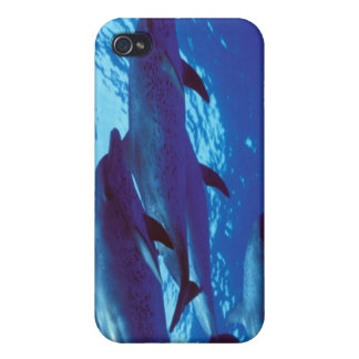 Caribbean, Bahamas Spotted dolphins iPhone 4/4S Cover