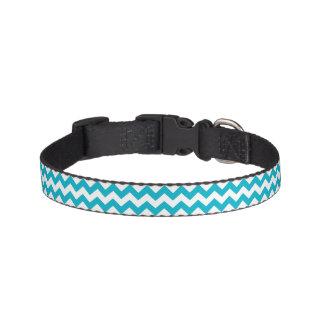 Caribbean Blue Chevron Pet Collar