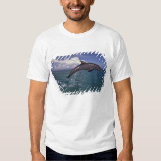 Caribbean, Bottlenose dolphin Tursiops 2 Tshirts