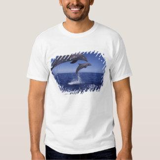 Caribbean, Bottlenose dolphins Tursiops 12 Tee Shirt