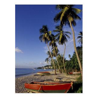 CARIBBEAN, Grenada, St. George, Boats on palm Postcard
