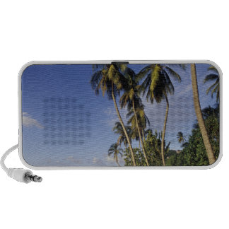 CARIBBEAN, Grenada, St. George, Boats on palm Travelling Speakers
