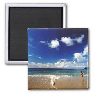 Caribbean, Lesser Antilles, West Indies, 2 Square Magnet