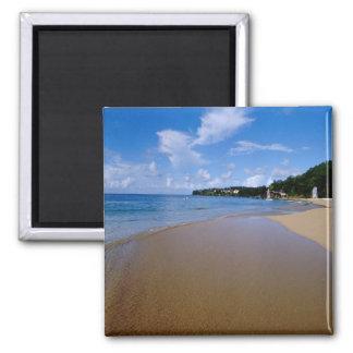 Caribbean, Lesser Antilles, West Indies, 3 Square Magnet