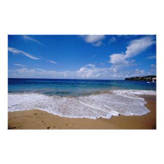 Caribbean, Lesser Antilles, West Indies, 4 Art Photo
