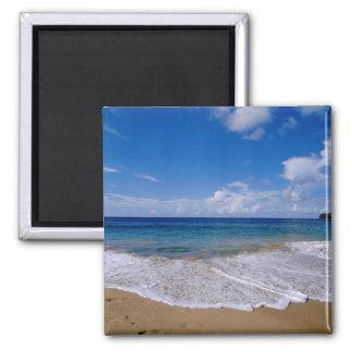 Caribbean, Lesser Antilles, West Indies, 4 Square Magnet