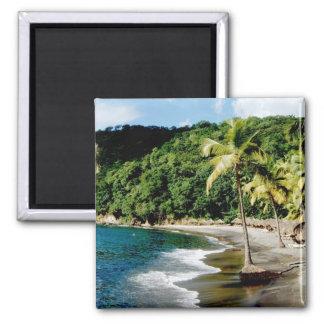 Caribbean, Lesser Antilles, West Indies, Saint Square Magnet