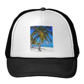Caribbean palm tree mesh hat