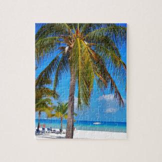 Caribbean palm tree puzzle