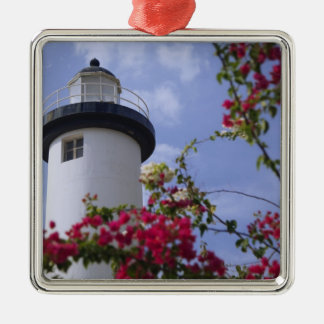 Caribbean, Puerto Rico, Viegues Island. The Metal Ornament