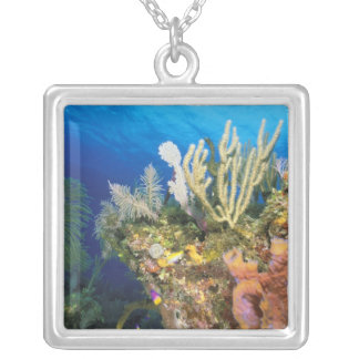 Caribbean. Reef. Square Pendant Necklace