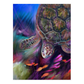 Caribbean Sea Turtles Postcard