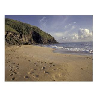Caribbean, St. Kitts. Footprints on Atlantic Postcard