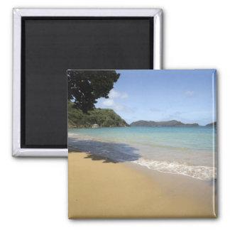 Caribbean - Tobago - Beach along Atlantic Square Magnet