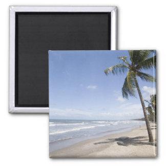 Caribbean - Trinidad - Manzanilla Beach on 2 Square Magnet