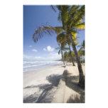 Caribbean - Trinidad - Manzanilla Beach on Art Photo