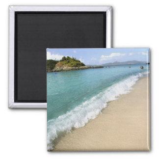 Caribbean, U.S. Virgin Islands, St. John, Magnet
