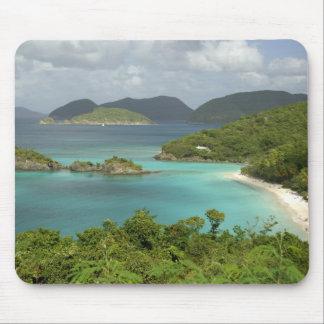 Caribbean, U.S. Virgin Islands, St. John, Trunk Mousepads