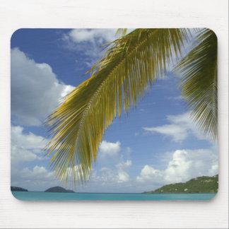 Caribbean, U.S. Virgin Islands, St.Thomas, Mousepad