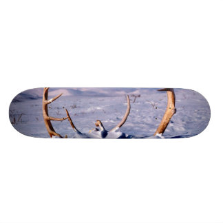 Caribou Antlers in The Snow 21.6 Cm Skateboard Deck