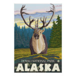 Caribou in the Wild - Denali National Park, Posters