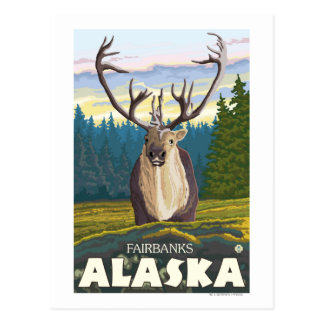Caribou in the Wild - Fairbanks, Alaska Postcard