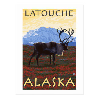 Caribou Scene - Latouche, Alaska Postcard