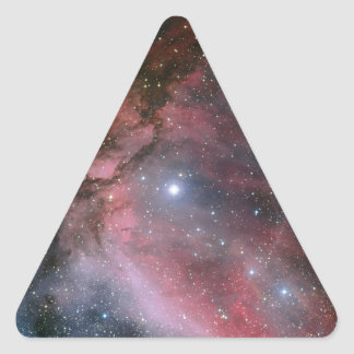 Carina Nebula around the Wolf–Rayet star WR 22 Triangle Sticker