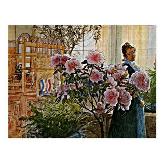 Carl Larsson art: Azalea Postcard