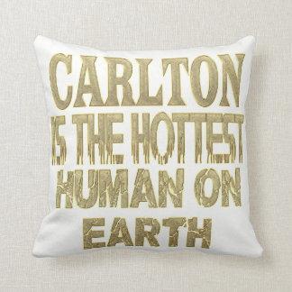 Carlton Pillow