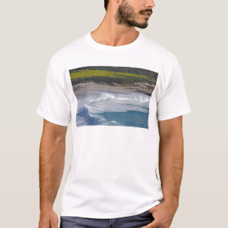 Carmel Point beach with wild flower field T-Shirt