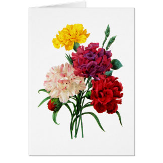 Carnation and Marigold Bouquet by Redoute Card