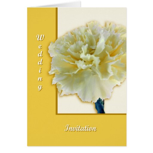 Carnation Greeting Cards