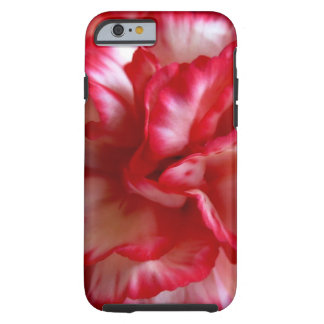carnation tough iPhone 6 case