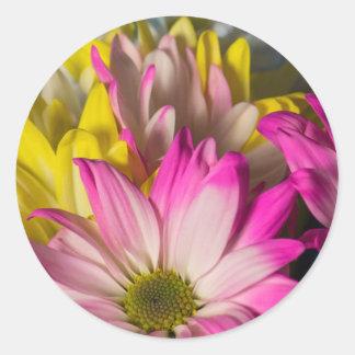 Carnations Classic Round Sticker