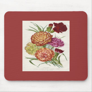 Carnations Mouse Mats