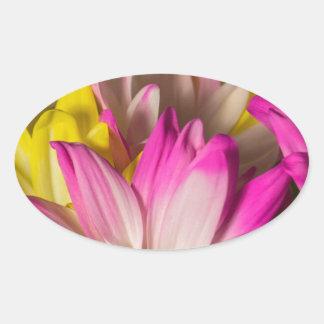 Carnations Oval Sticker
