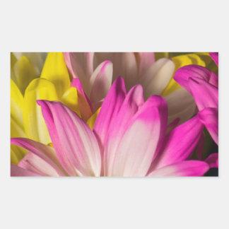 Carnations Rectangular Sticker
