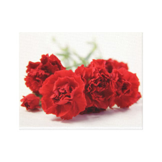 Carnations Stretched Canvas Prints
