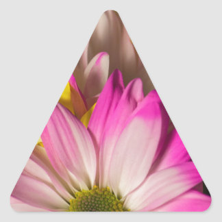 Carnations Triangle Sticker