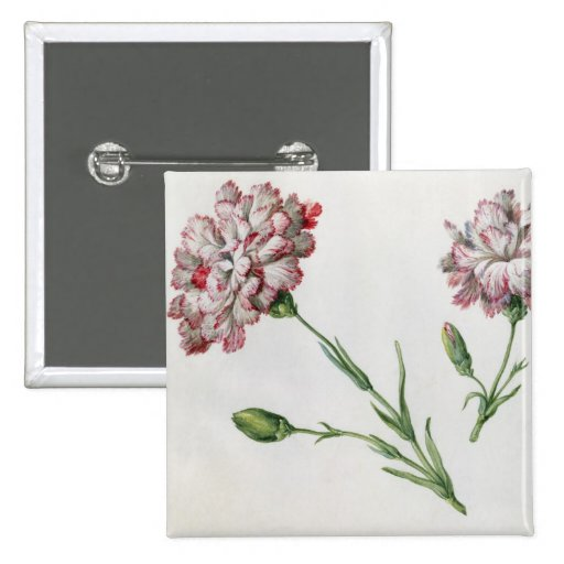 Carnations (w/c on paper) pinback button