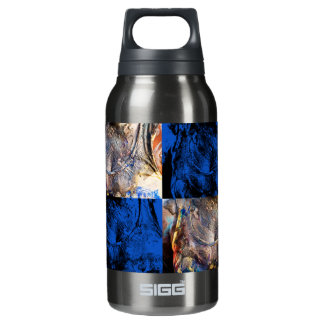 carnival chest insulated water bottle