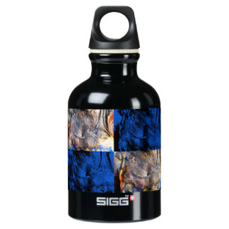 carnival chest water bottle
