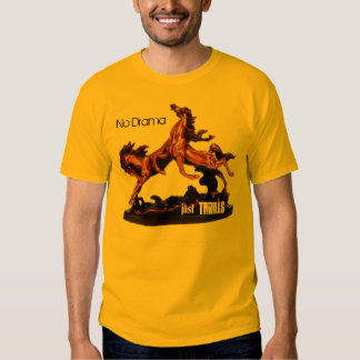 Carnival Thrill Tee Shirts