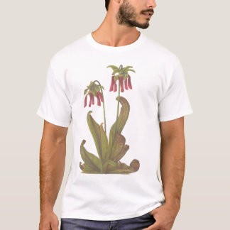 Carnivorous Plant - Sarracenia psittacina T-Shirt