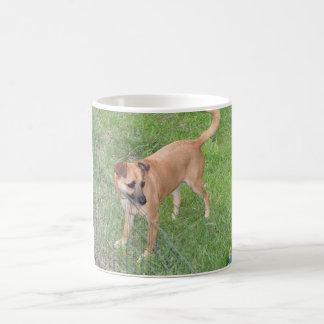carolina dog full 2.png coffee mug