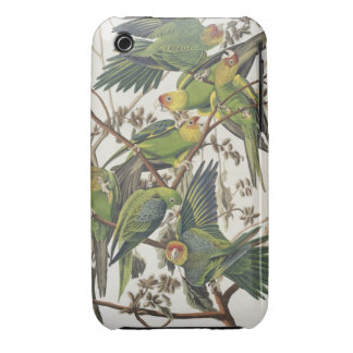 Carolina Parakeet, from 'Birds of America', 1829 Case-Mate iPhone 3 Case